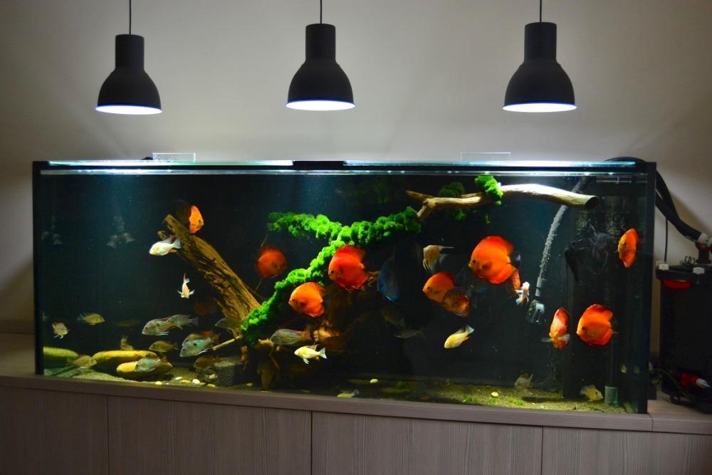 LED osvětlení Akvárium Doubrava 2