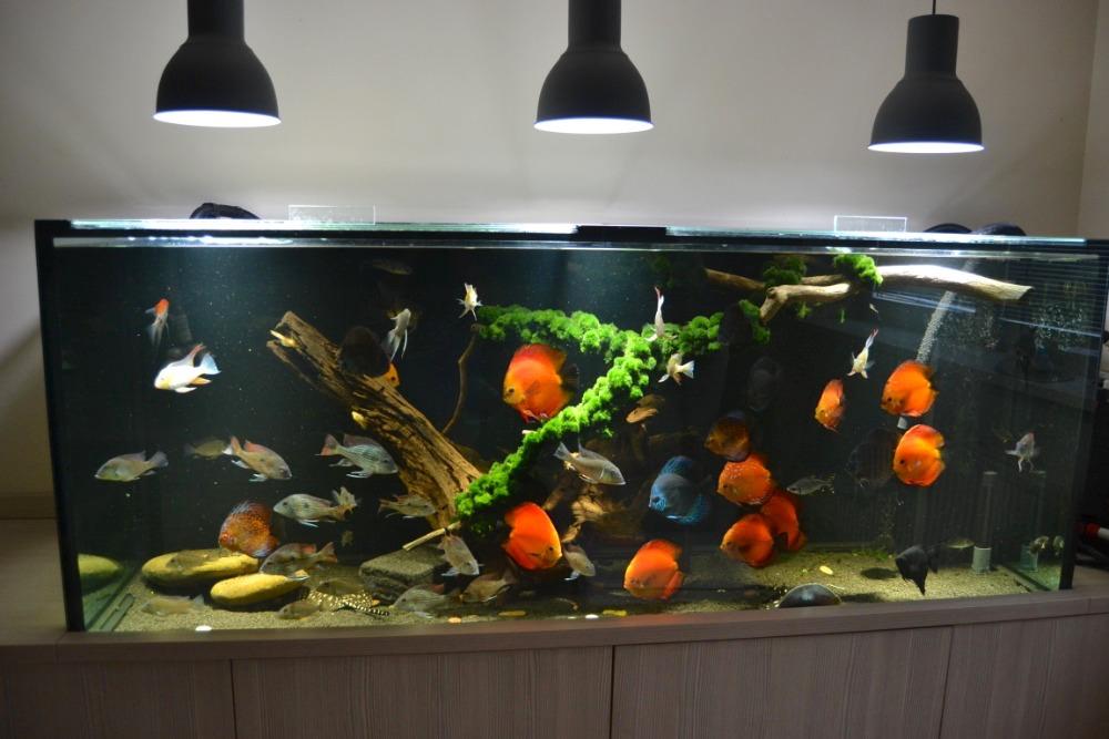 LED osvětlení Akvárium Doubrava 3