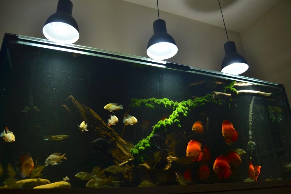 LED osvětlení Akvárium Doubrava 4