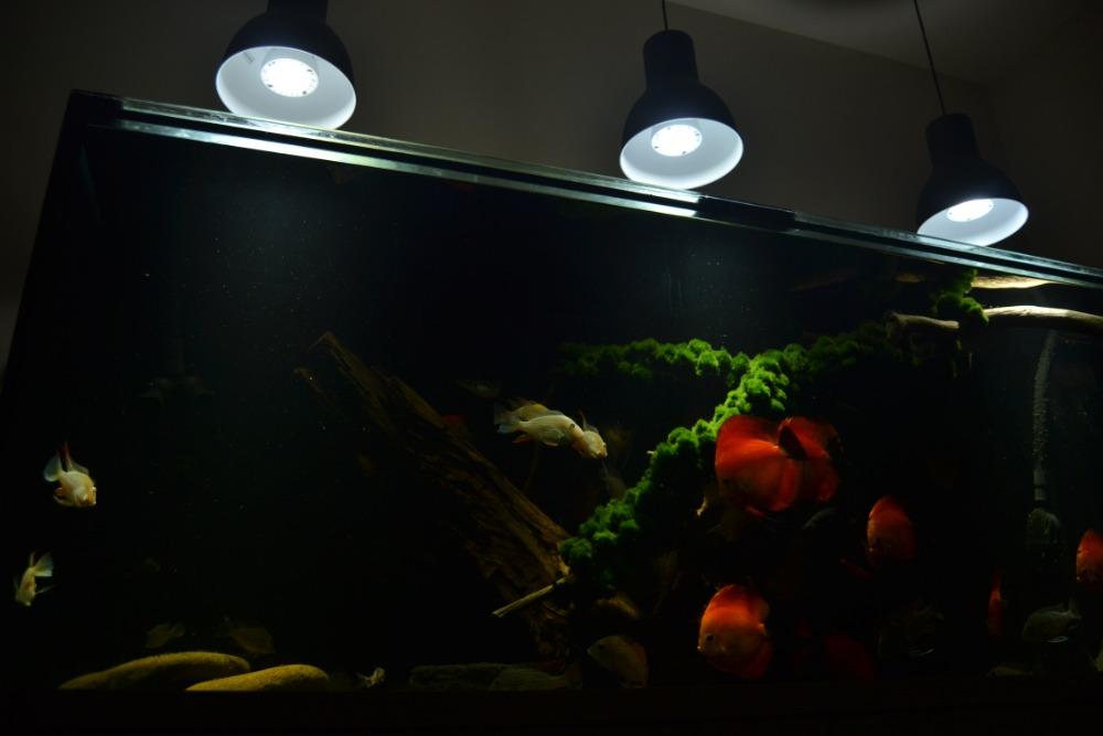 LED osvětlení Akvárium Doubrava 5