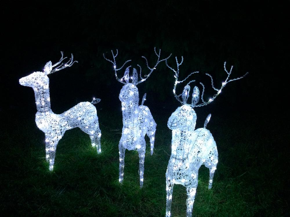 LED osvětlení zahrady sob 1