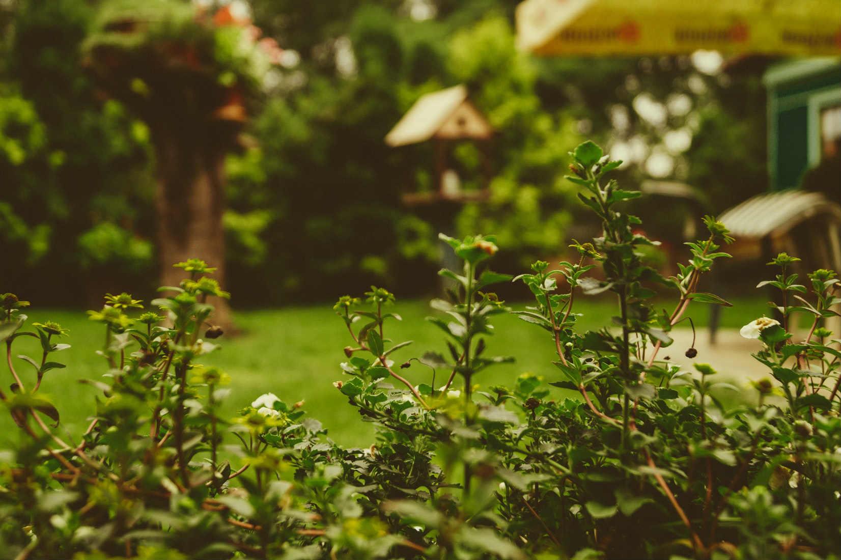 Zahradní-osvětlení-altán